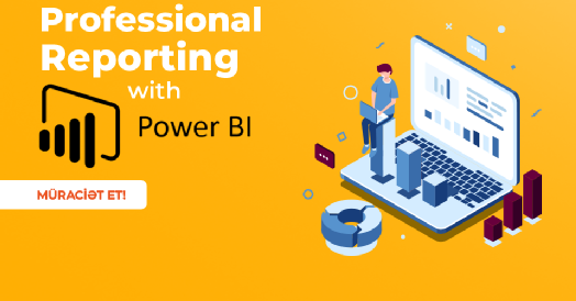 Professional Reporting with Power BI təlimi